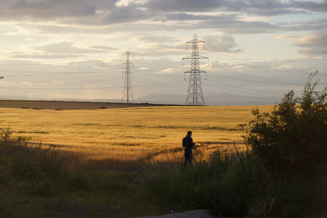 Fields near Tranent
