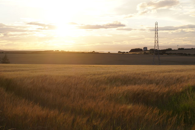 Fields near Elphinstone