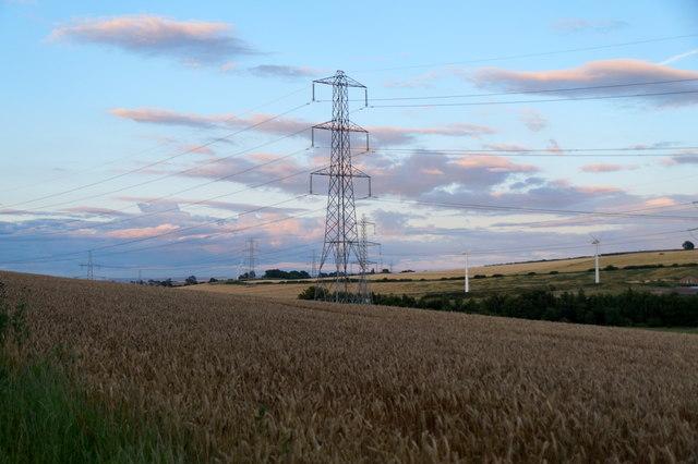 Fields near Cousland