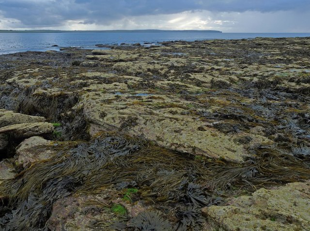 Point of Ness, Caithness