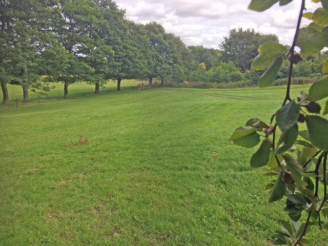 Nostell parkland