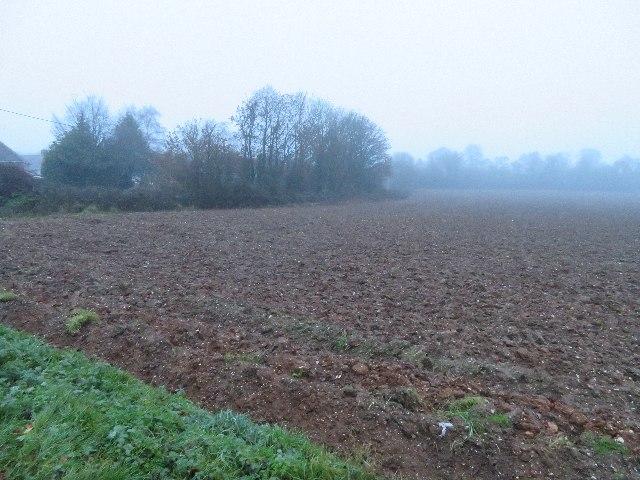 Lower Field (29.5 acres)