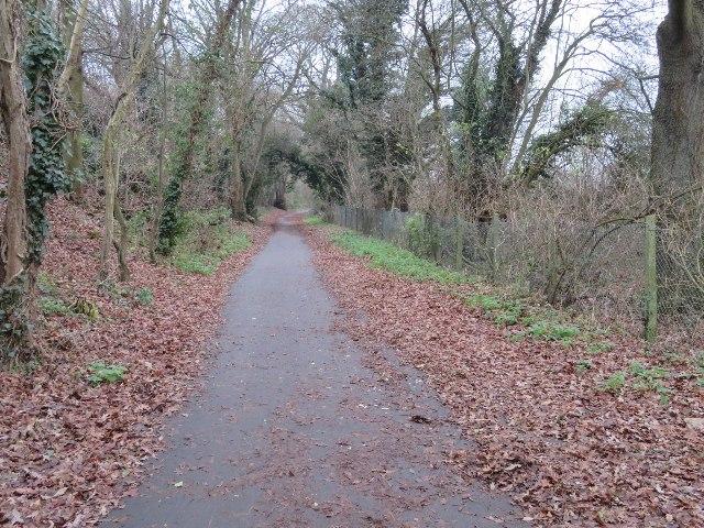 Cycle path behind Grafton Way