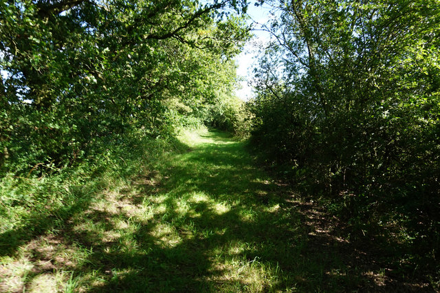 Fox Covert Lane north of Spaldington