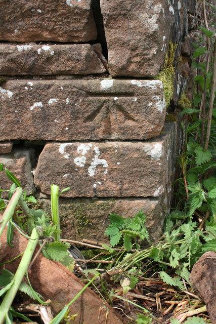 Benchmark on Salkeld Road wall angle