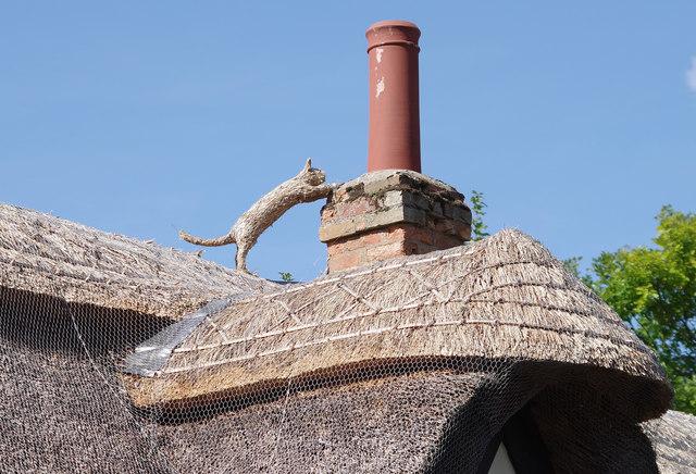 Straw cat on thatch