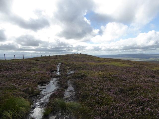 Wet track on Wardlaw Hill