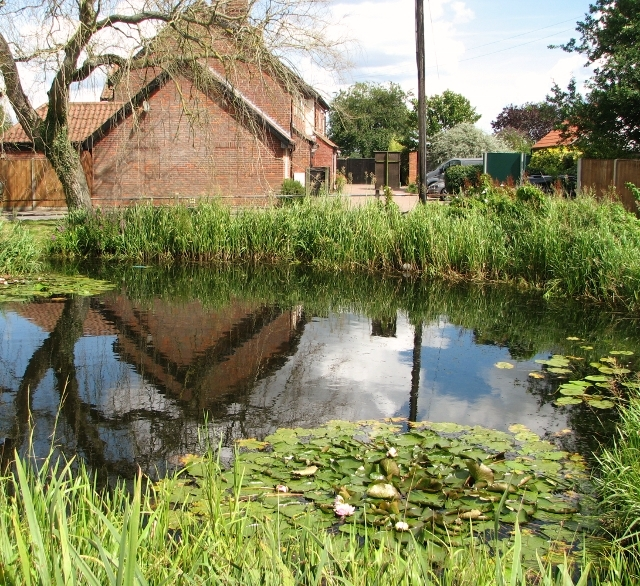 The village pond in Surlingham