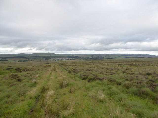 Moorland track north of Wardlaw Hill