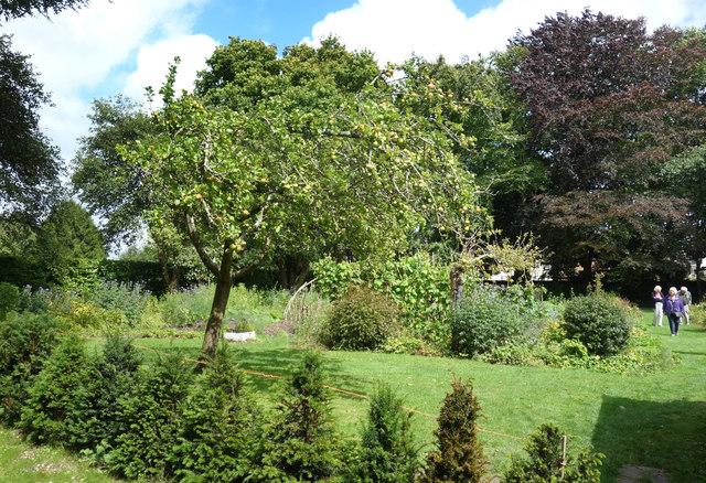 Garden at Max Gate
