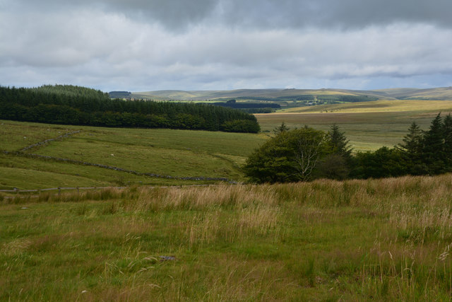 West Devon : Dartmoor Scenery