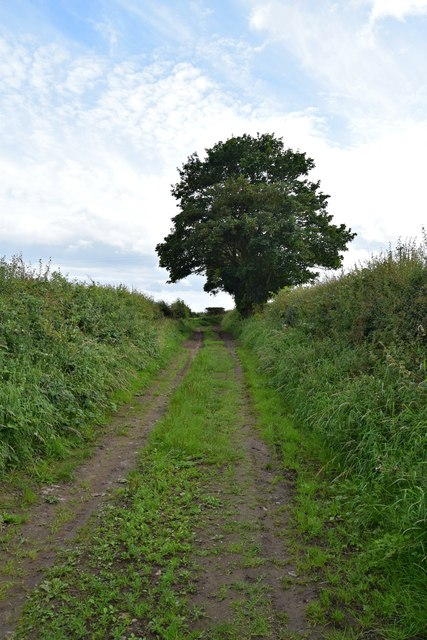 Footpath east of Southfield Farm