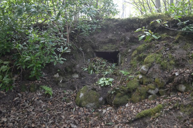 Burial Cist in Dunrobin Park, Sutherland
