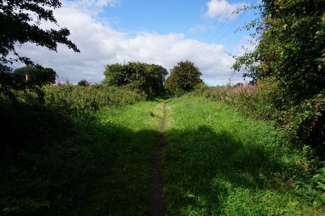 Rail trail towards Bubwith
