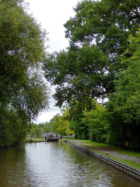Llangollen Canal approaching Swanley Locks, Cheshire