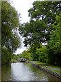 SJ6152 : Llangollen Canal approaching Swanley Locks, Cheshire by Roger  Kidd