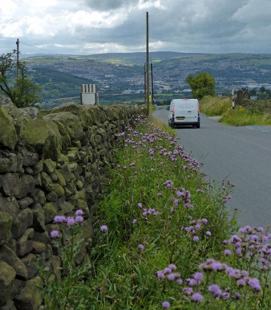 Otley Road descending towards East Morton