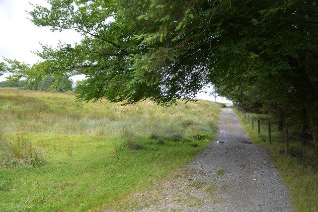 West Devon : Footpath