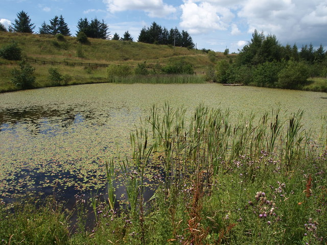 Coalwater Ponds