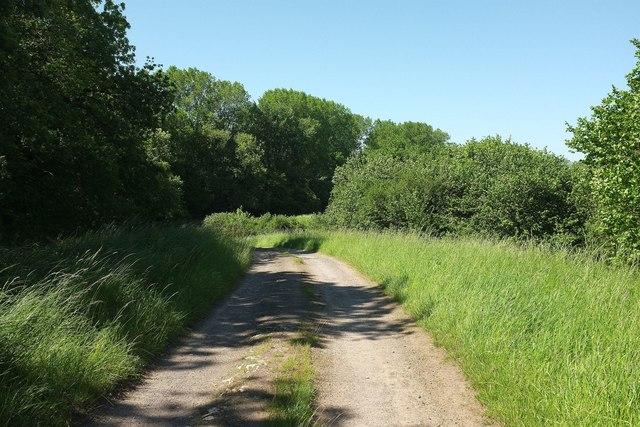 Track northwest of Romsey Farm