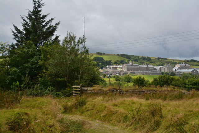 Princetown : Grassy Path
