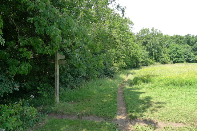 Alternative routes for the Cotswold Way on Stinchcombe Hill