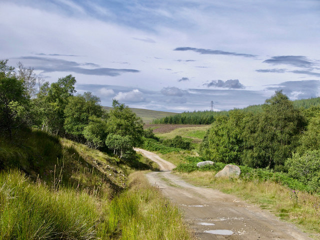 Farm road to Corriefearn