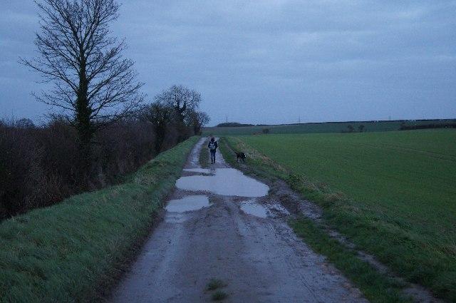 Farm track (Harcamlow Way)