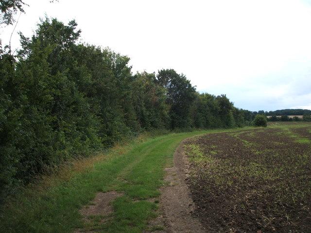Farm track (footpath) to Lucas's Lane