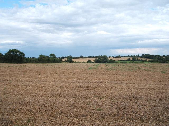 Farmland east of Radley Green Road