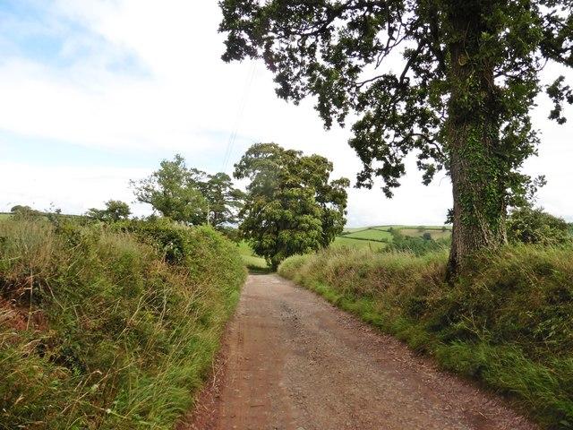 Firebeacon Lane