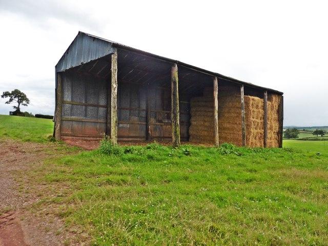 Corrugated iron barn on Hone Hill