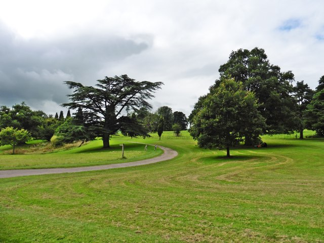 Parkland at Knighshayes Court