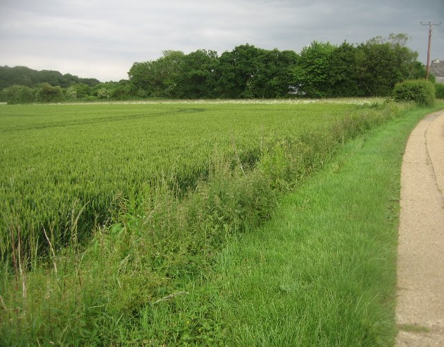 Track to Breach Farm
