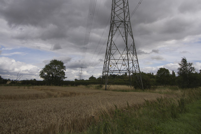 Under the pylons