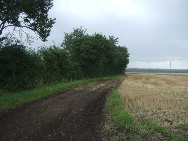 Farm track near Embleys Farm