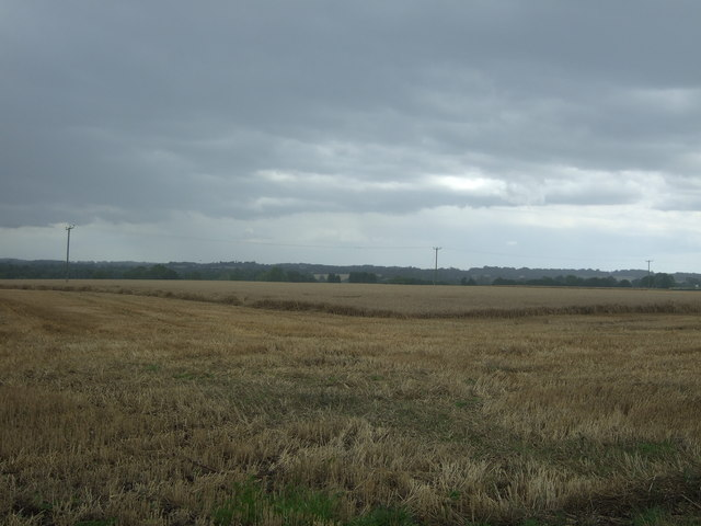Partly harvested field off Fyfield Road