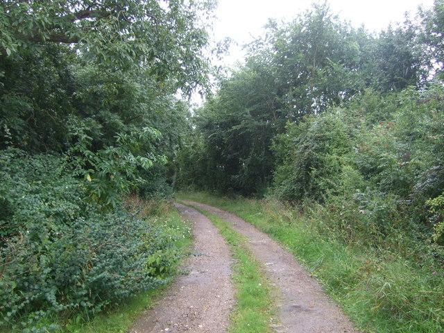 Track to Dunstans Farm