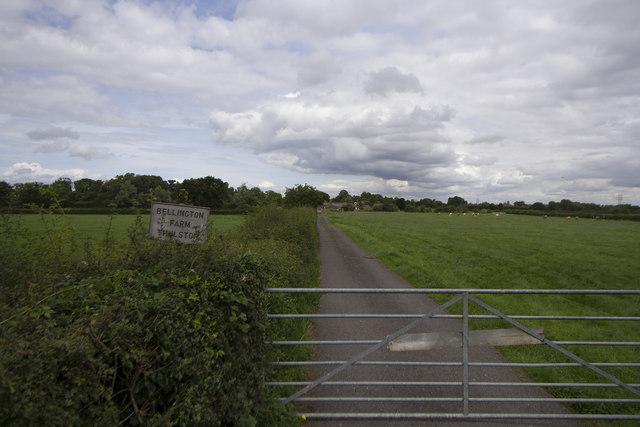 Track to Bellingham Farm