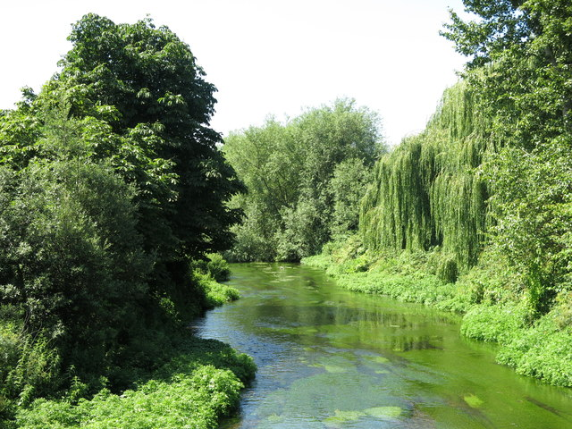 The River Colne, south of Oxford Road, Uxbridge (2)