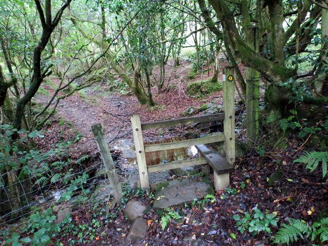 Llwybr Caer Cadwgan / Caer Cadwgan's Path