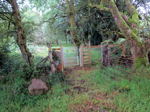 Llwybr Cae Garw / Cae Garw Footpath