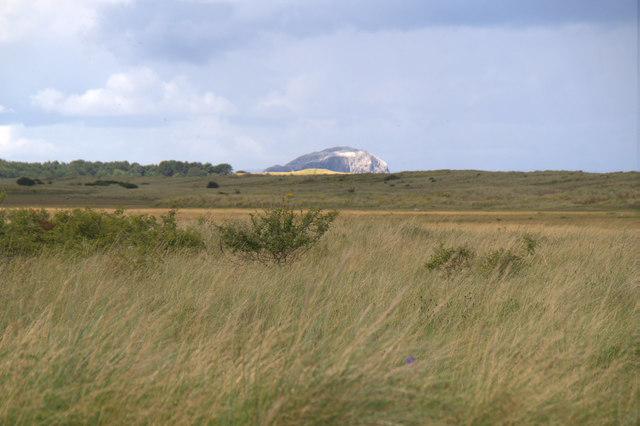 Bass Rock from John Muir Country Park at Belhaven Bay