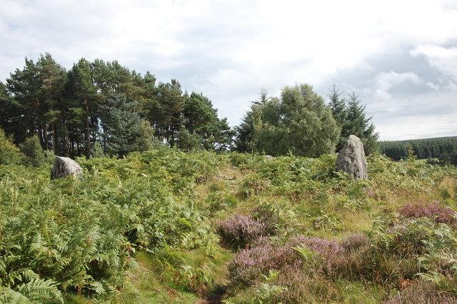Clune Wood stone circle