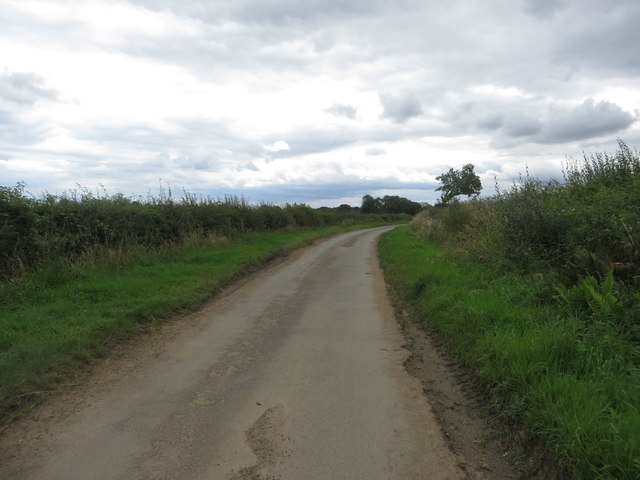 Ulgham Lane, south of Ulgham