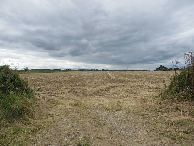Cultivated arable field, Ulgham