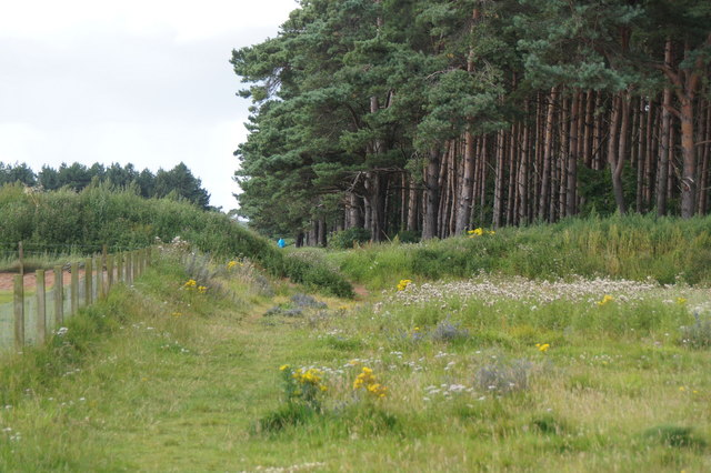 The John Muir Way passing East Links, Dunbar