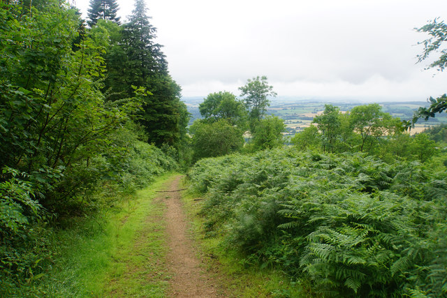 Path near Paradise