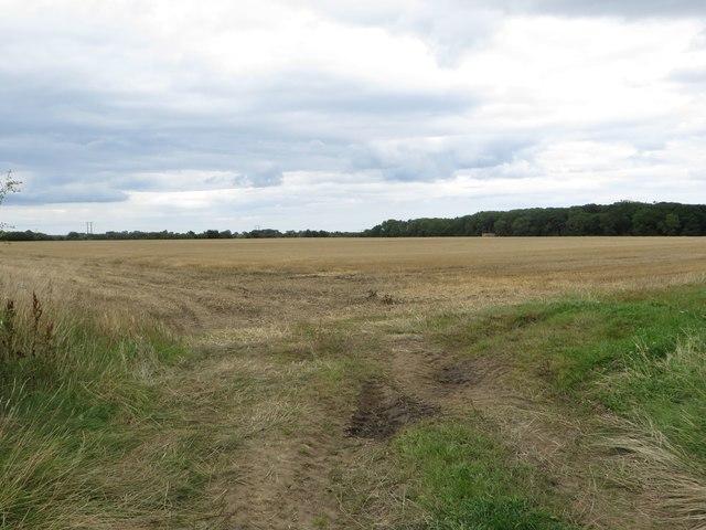 Arable field north of Broomhaugh