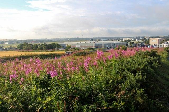 Overlooking Airside Business Park, Aberdeen Airport